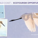 Ecotourism in South Walton